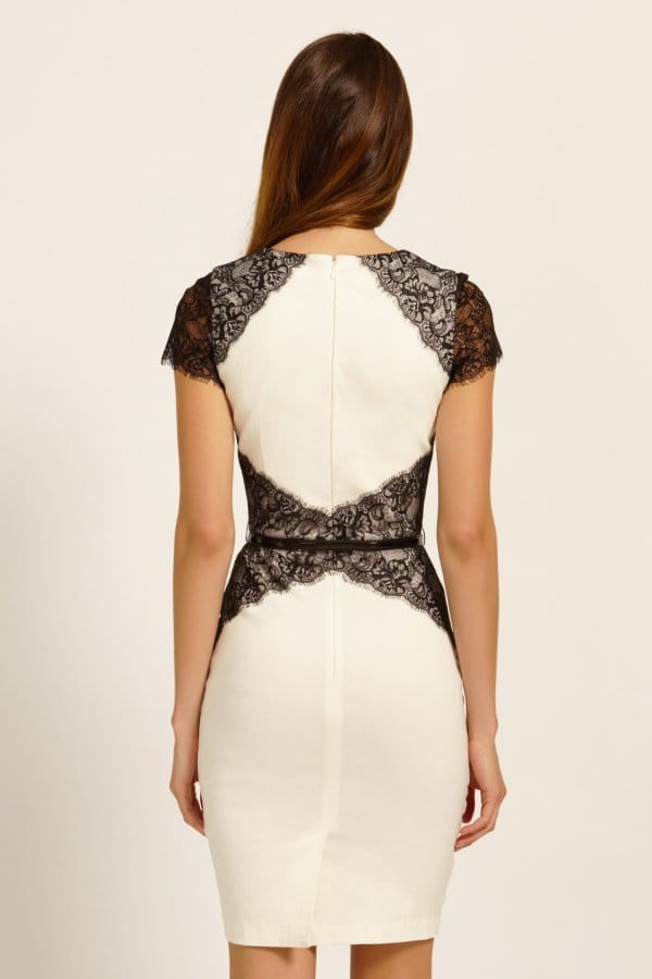 Cream &amp Black Lace Panel Cap Sleeve Bodycon Dress