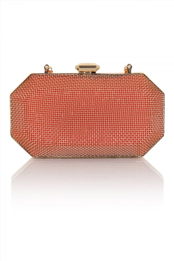 81fac0e012 ... Little Mistress Handbags A Coral and Gold Cage Clutch Bag with  Detachable Chain Strapclass  ...