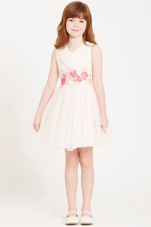 Stockists of Beige Embroidered Mesh Dress