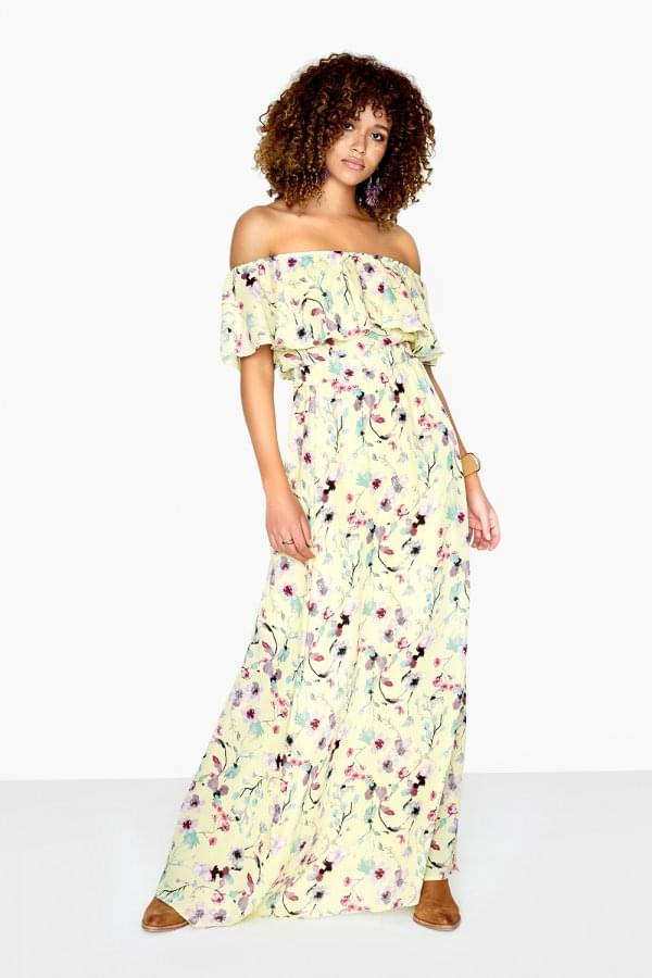 Danielle Maxi Dress In Floral Meadow