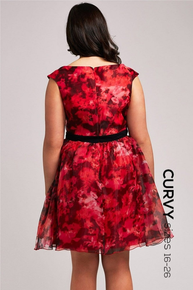 Little Mistress Curvy Orange Floral Organza Bardot Dress