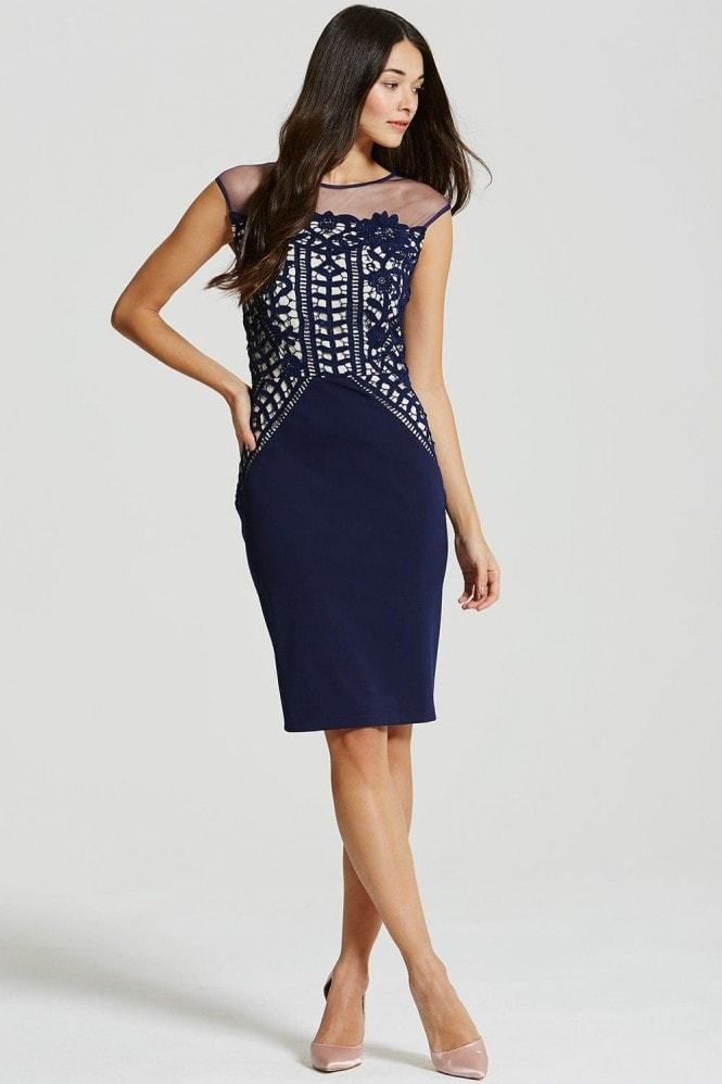 Navy Crochet Lace and Sheer Bodycon Dress