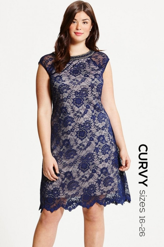Little Mistress Curvy Navy Lace Embellished Neck Shift Dress