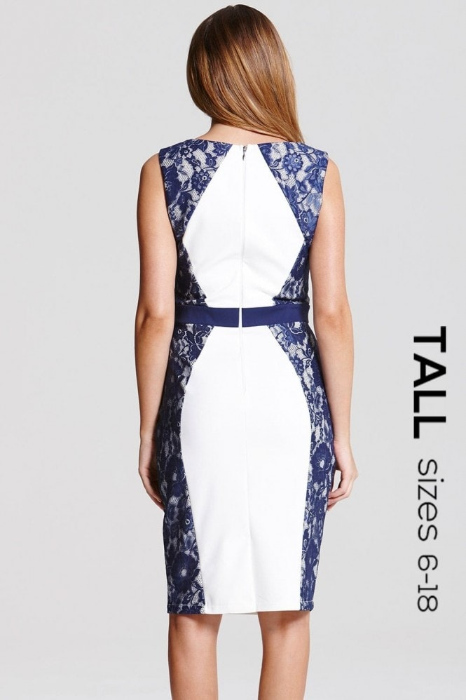 Tall Cream and Navy Lace Panel Dress