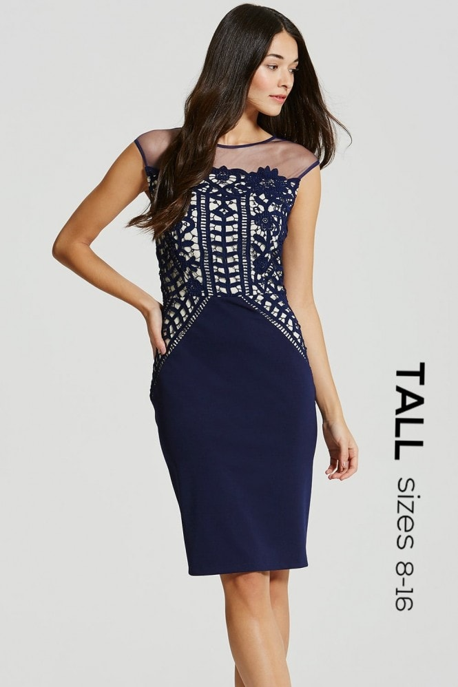 Tall Navy Crochet Lace and Sheer Bodycon Dress