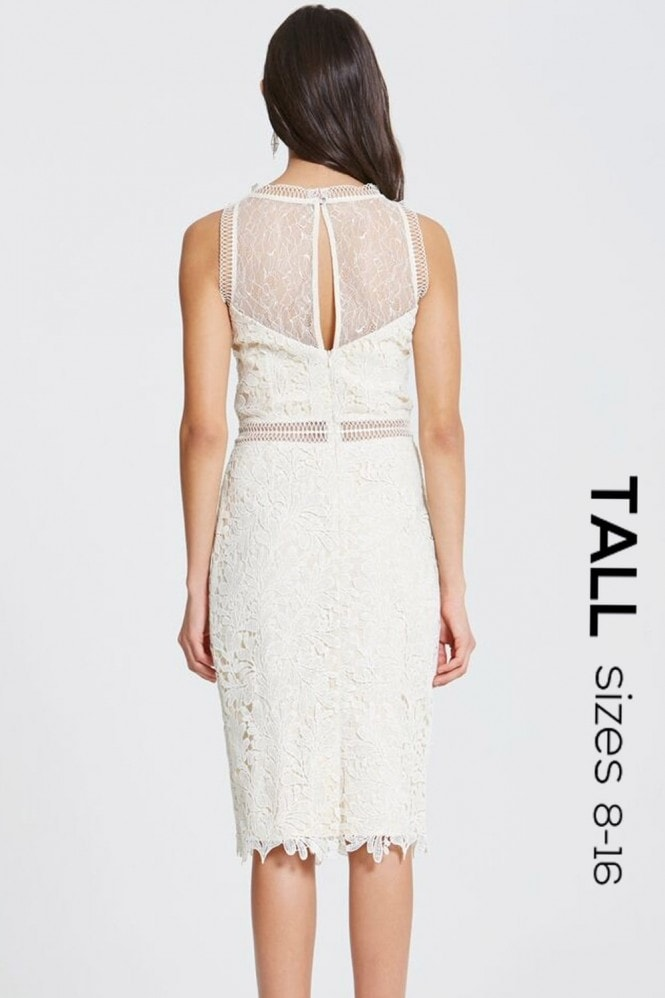 Tall Cream Crochet and Lace Bodycon Dress