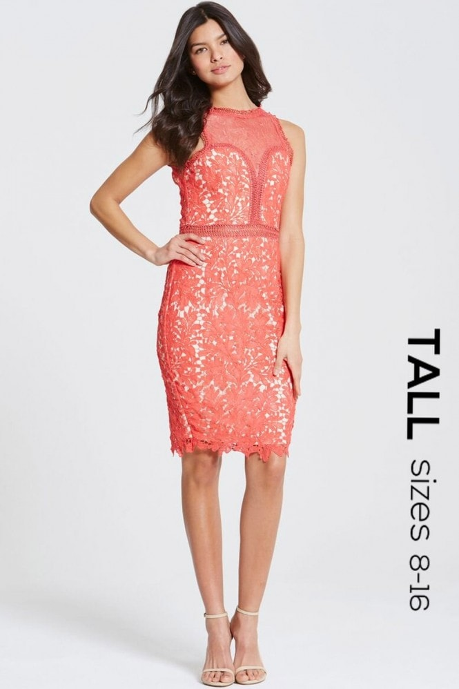 Tall Coral Crochet and Lace Bodycon Dress