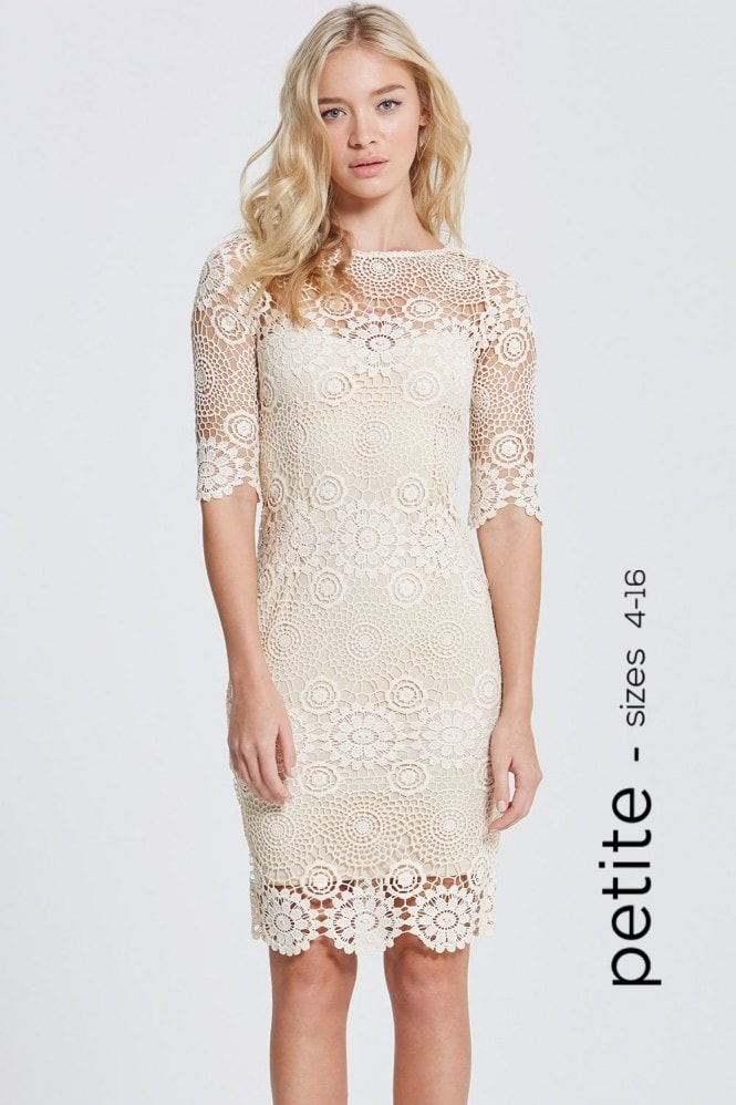 Petite Cream Crochet Lace 3/4 Sleeve Dress