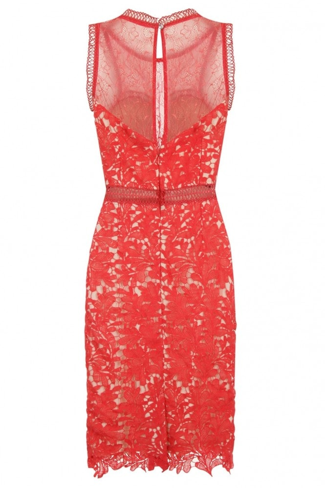 Coral Crochet and Lace Bodycon Dress