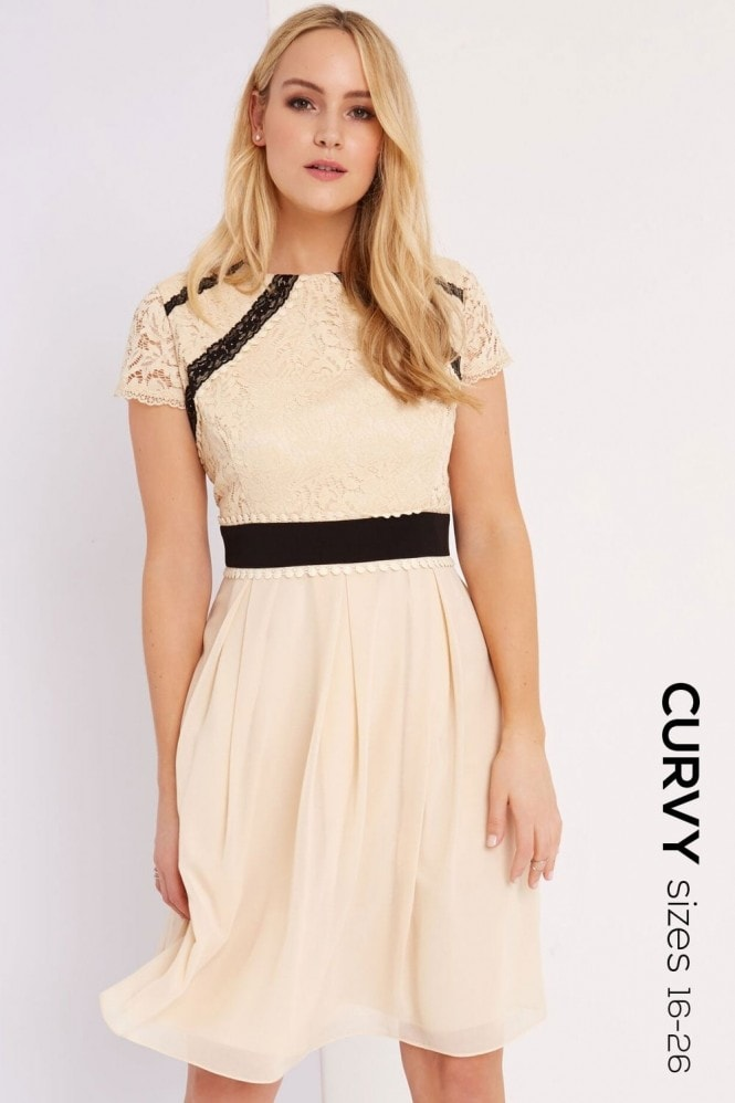 Little Mistress Curvy Beige Lace Dress