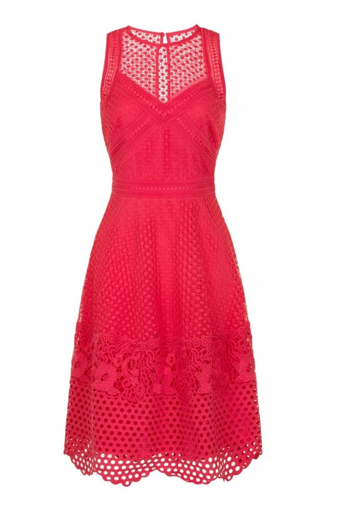Little Mistress Daisy Guipure Lace Skater Dress