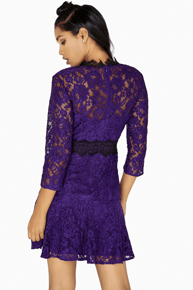 Little Mistress Fiona Fit And Flare Lace Panel Dress