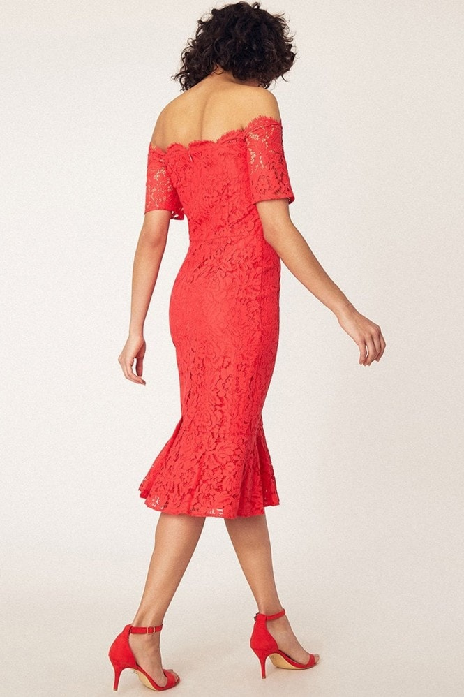 Oasis Coral Lace Bardot Midi Pencil Dress