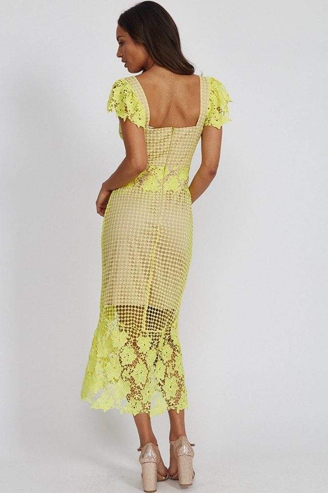 Liquorish Pistachio Lace Midi Dress