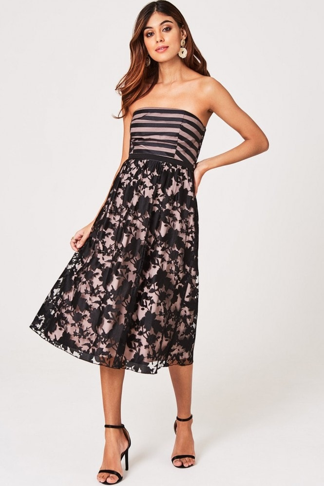 Little Mistress Elly Floral And Stripe Organza Midi Skater Dress