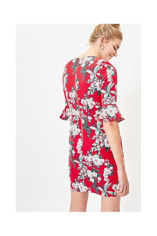 Oasis FLORAL FLUTE SLEEVE SHIFT IN MULTI RED