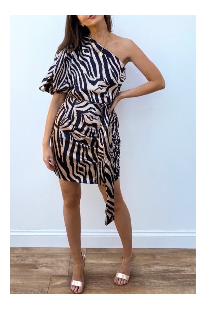 Steffy Zebra-Print Satin One-Shoulder Dress