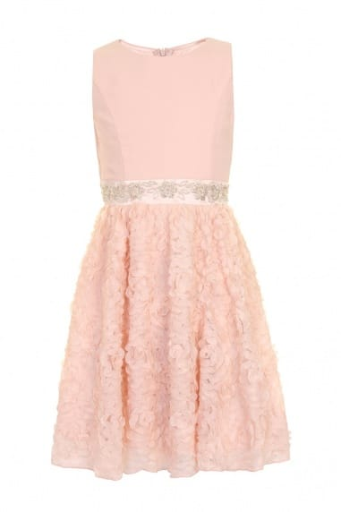 Pink Embellished Lace Party Dress