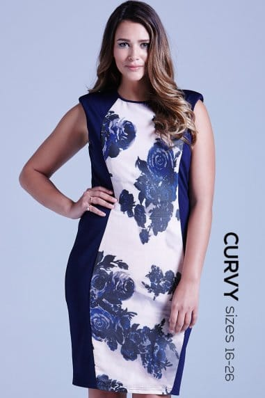 Navy Panelled Floral Front Dress