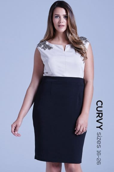 Curvy Black and Cream Floral Embellished Dress