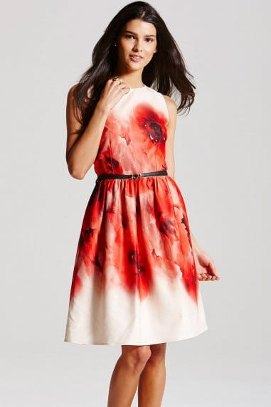 Blurred Poppy Print Fit and Flare Dress
