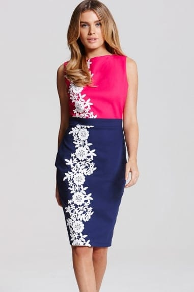 Pink and Navy Applique Dress