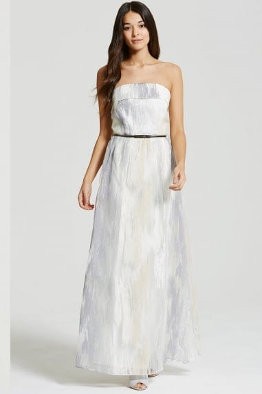 Silver and White Organza Embroidered Maxi Dress