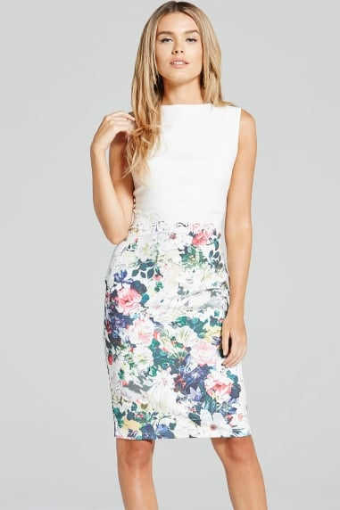 Two Tone Floral Print and Lace Dress