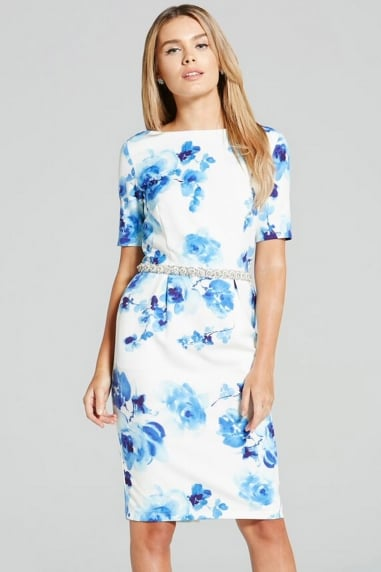 Blur Rose Print Wiggle Dress