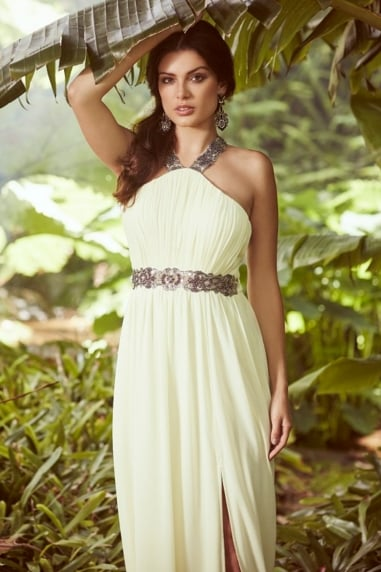 Lemon Embellished Exposed Back Maxi Dress