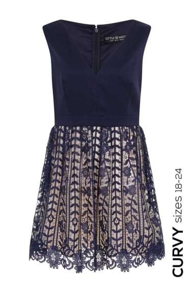 Navy Crochet Lace Plunge Mini Dress