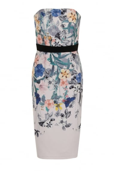 Botanical Print Bandeau Midi Dress