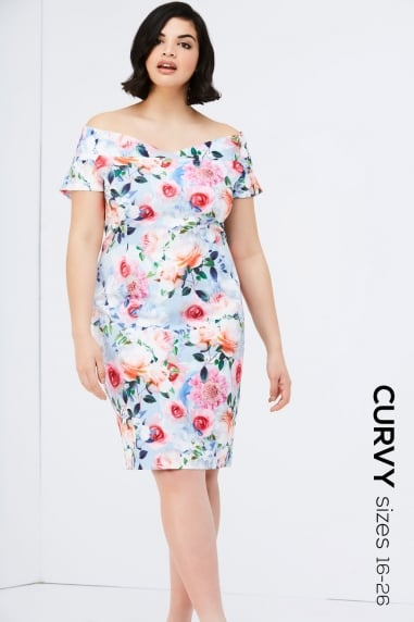 Rose Floral Print Bodycon Dress