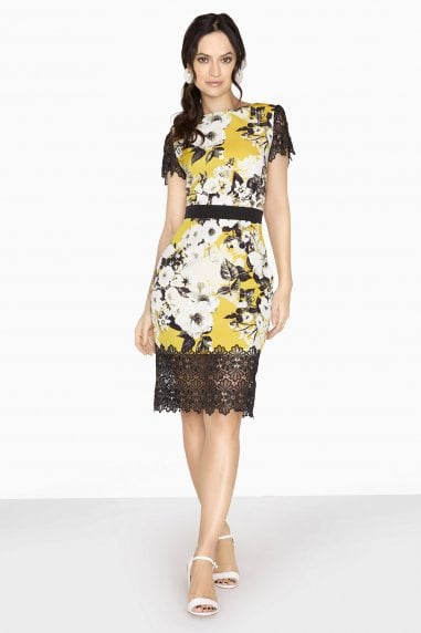 Moura Lace Hem Pencil Dress