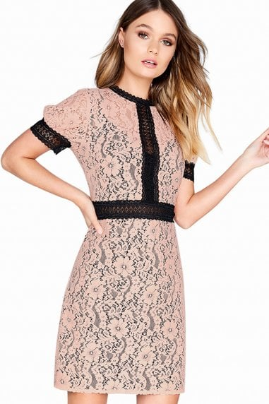 Sherbert Lace Dress