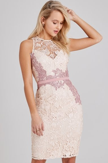 Eloise Rose Lace Pencil Dress