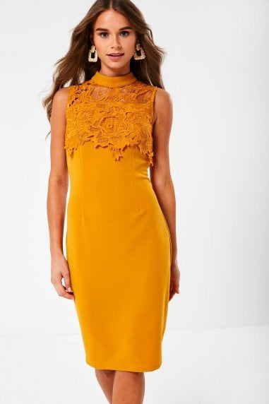 Remi Lace Pencil Dress in Mustard