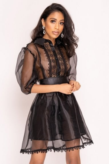 Black Puff Sleeve Organza Mini Dress