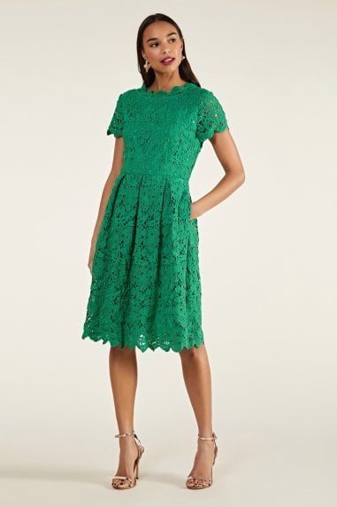 Guipure Lace Fit And Flare Dress