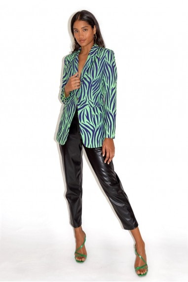 Blue and Mint Zebra Print Blazer