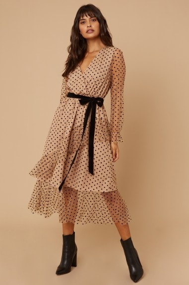 Wren Nude Spot Mesh Long sleeve Midi Dress