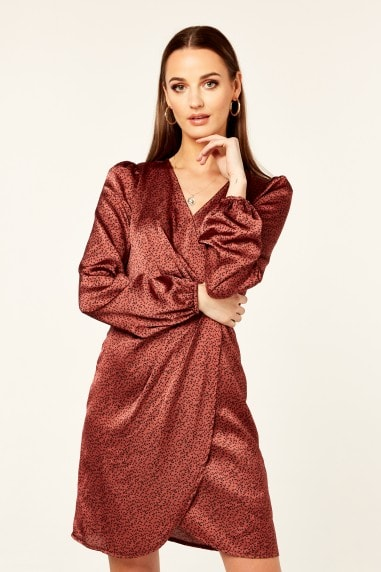 Rust Animal Print Long Sleeve Wrap Mini Dress