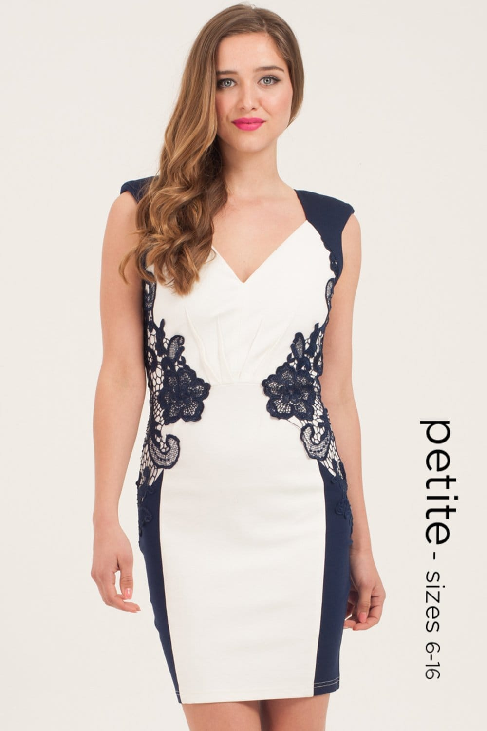 Petite Nude And Navy Lace Detail Bodycon Dress